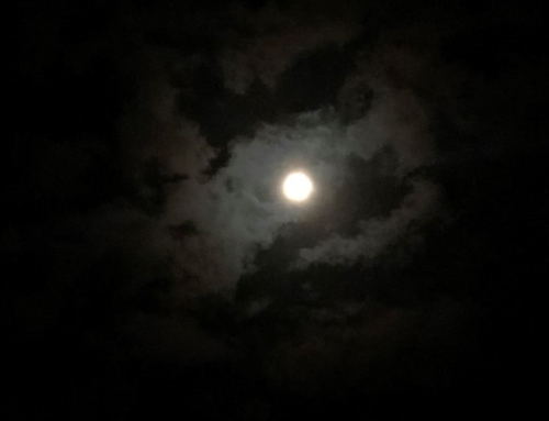 晩秋の満月