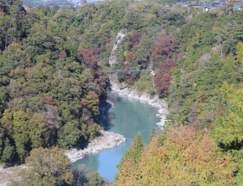 天竜峡大橋から見た紅葉